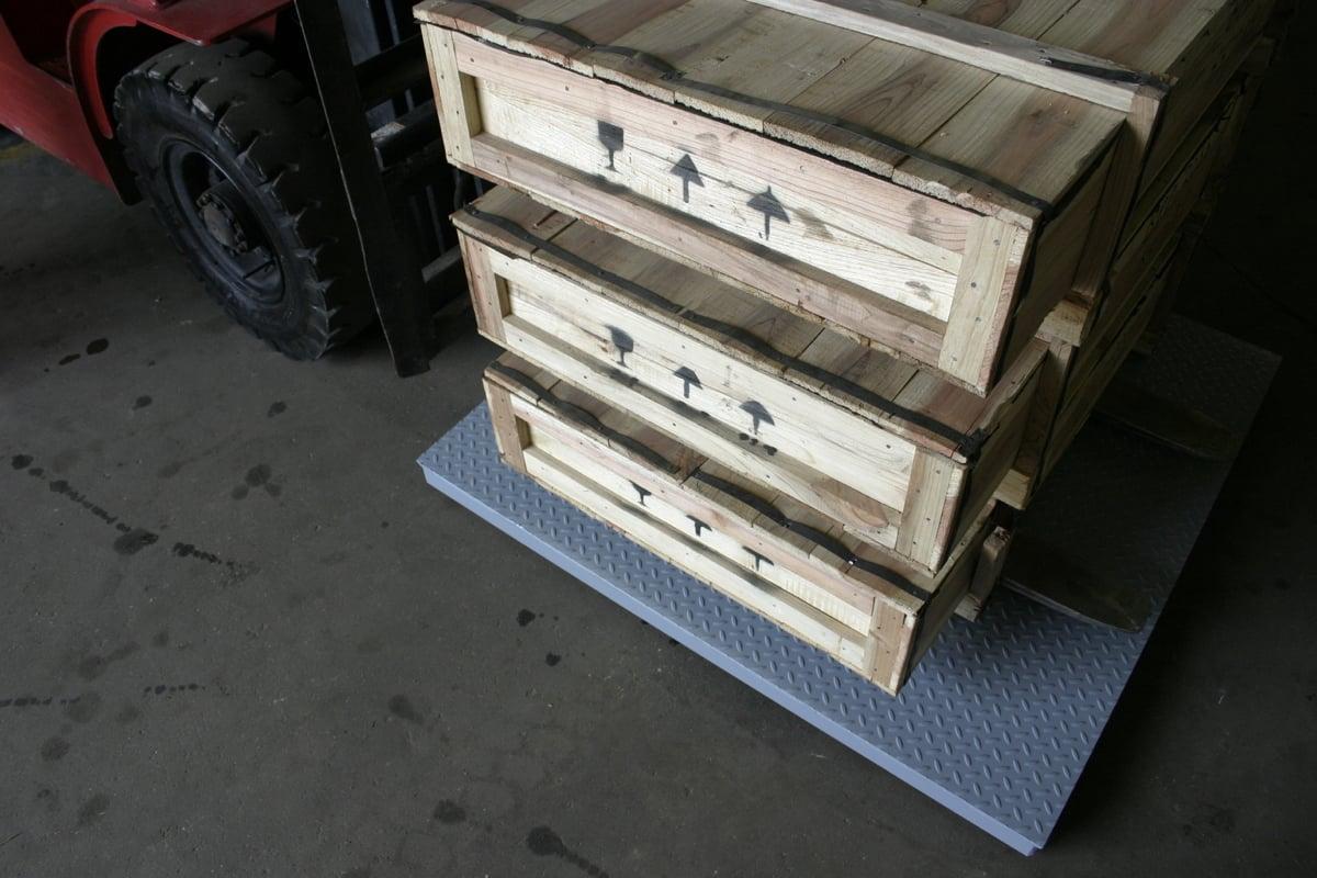 Aegis Industrial stainless steel floor scales